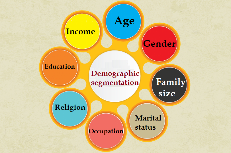 demographic segmentation infographic