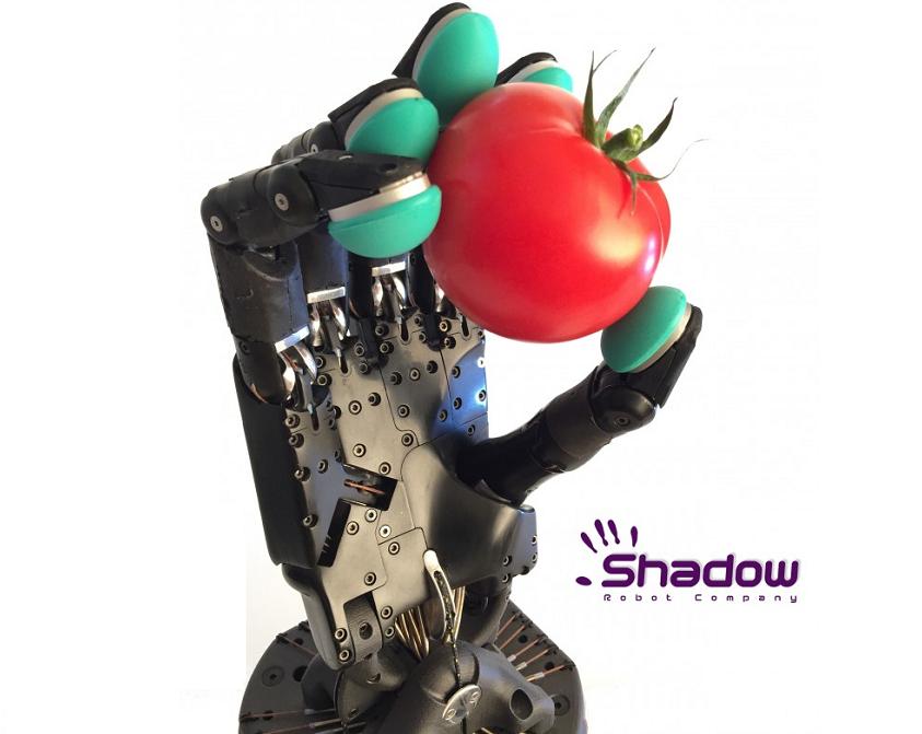 Shadow Dexterous Hand Image 2
